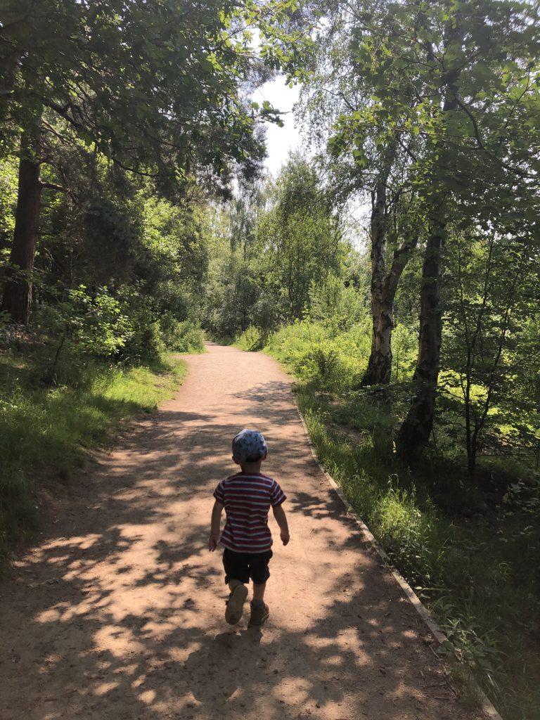 woodland walk - pram friendly route