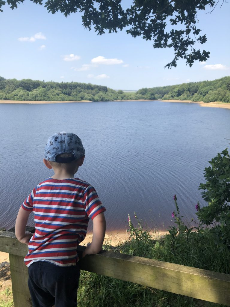 Looking out over Swinsty Reservoir