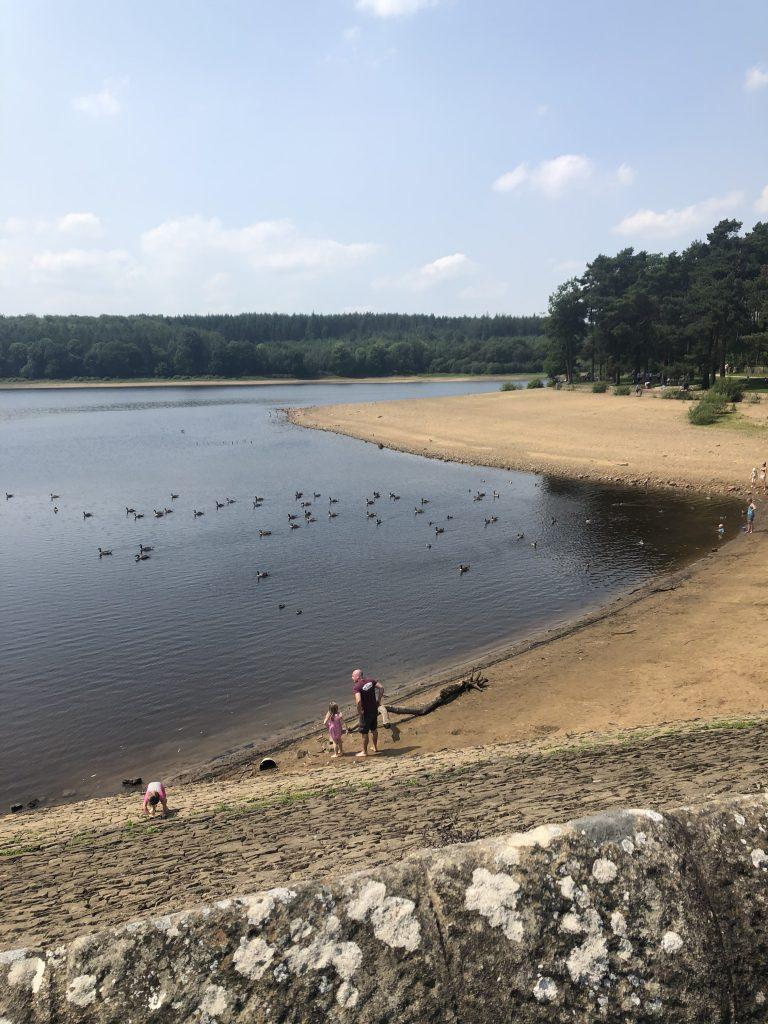 swinsty beach - paddle spot