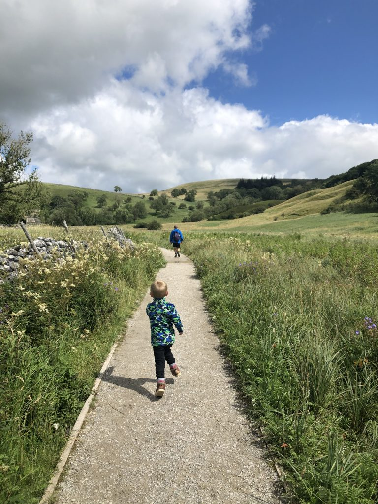 Walking through the meadow to Janet's Foss