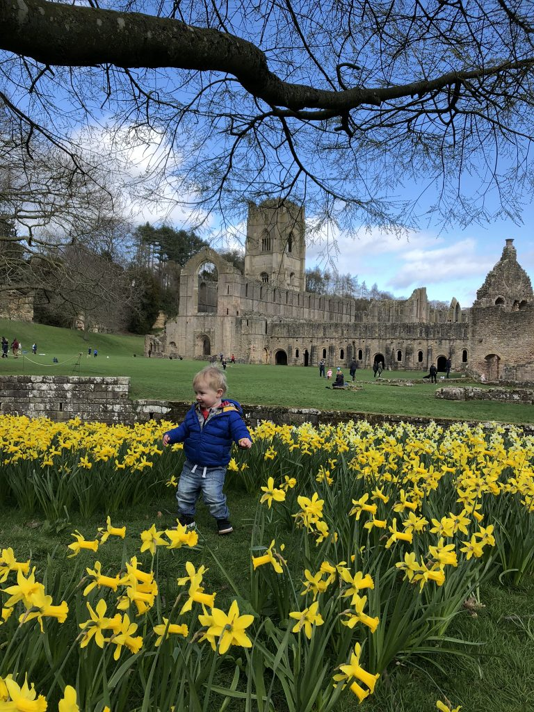 spring time at fountains abbey