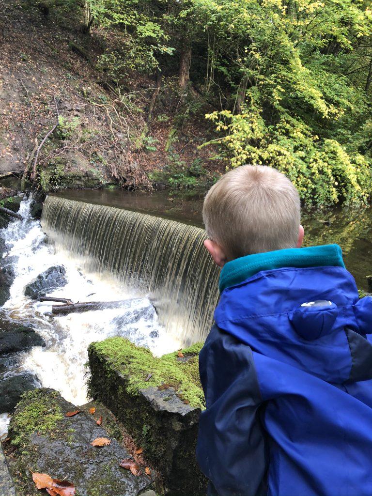 Skipton woods - wellness walk