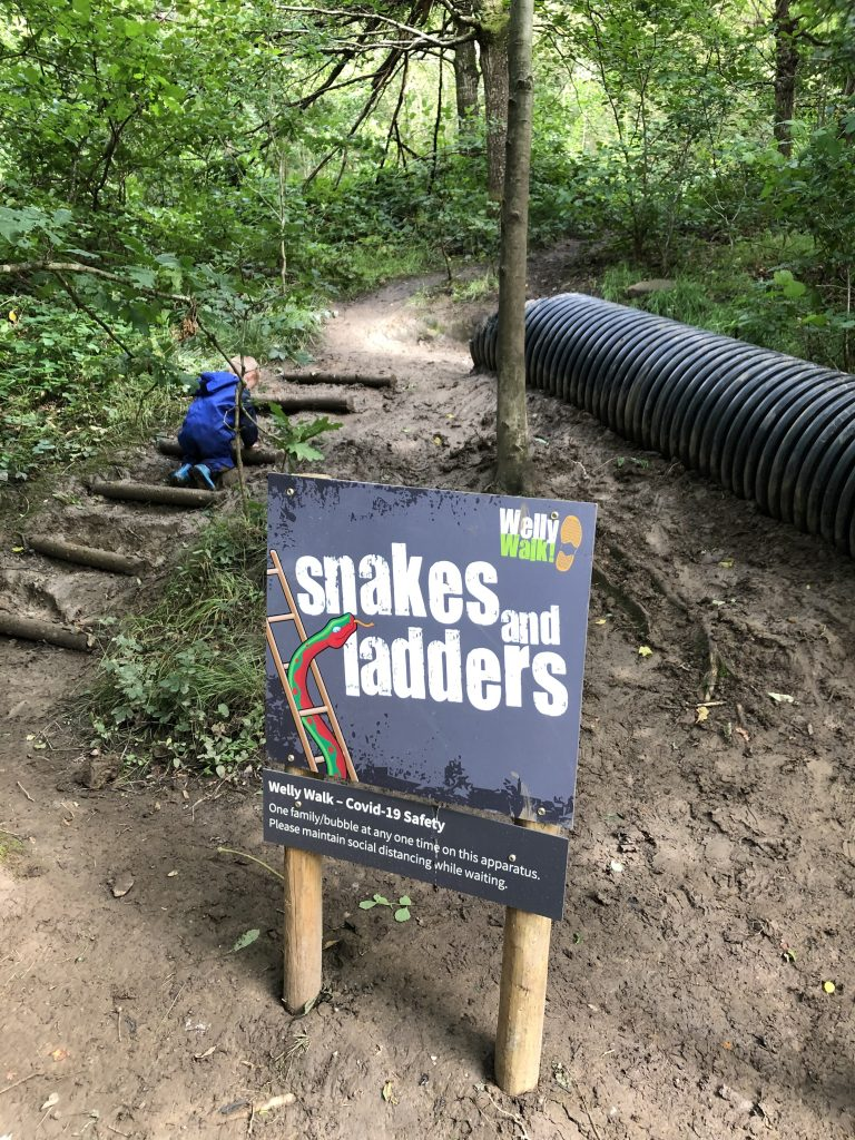 Snakes and ladders on the Welly Walk