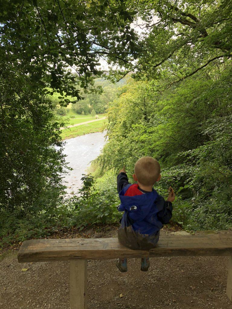 Views of the river Wharfe