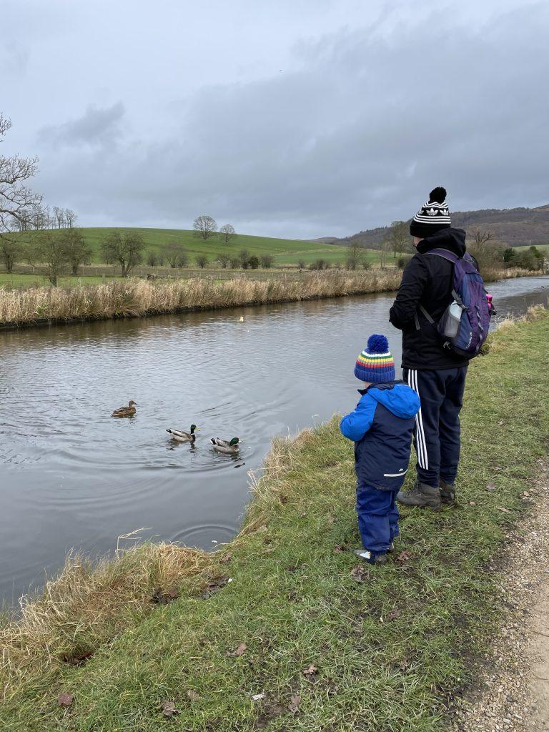 feeding the ducks along the canal