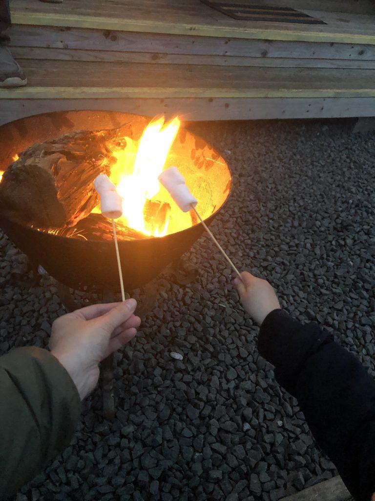 toasting marshmallows on the open fire