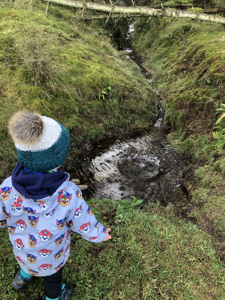 Playing in the woods and stream