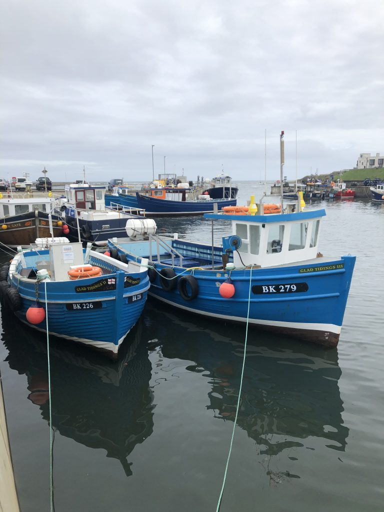 boats in the water at seahouses harbour