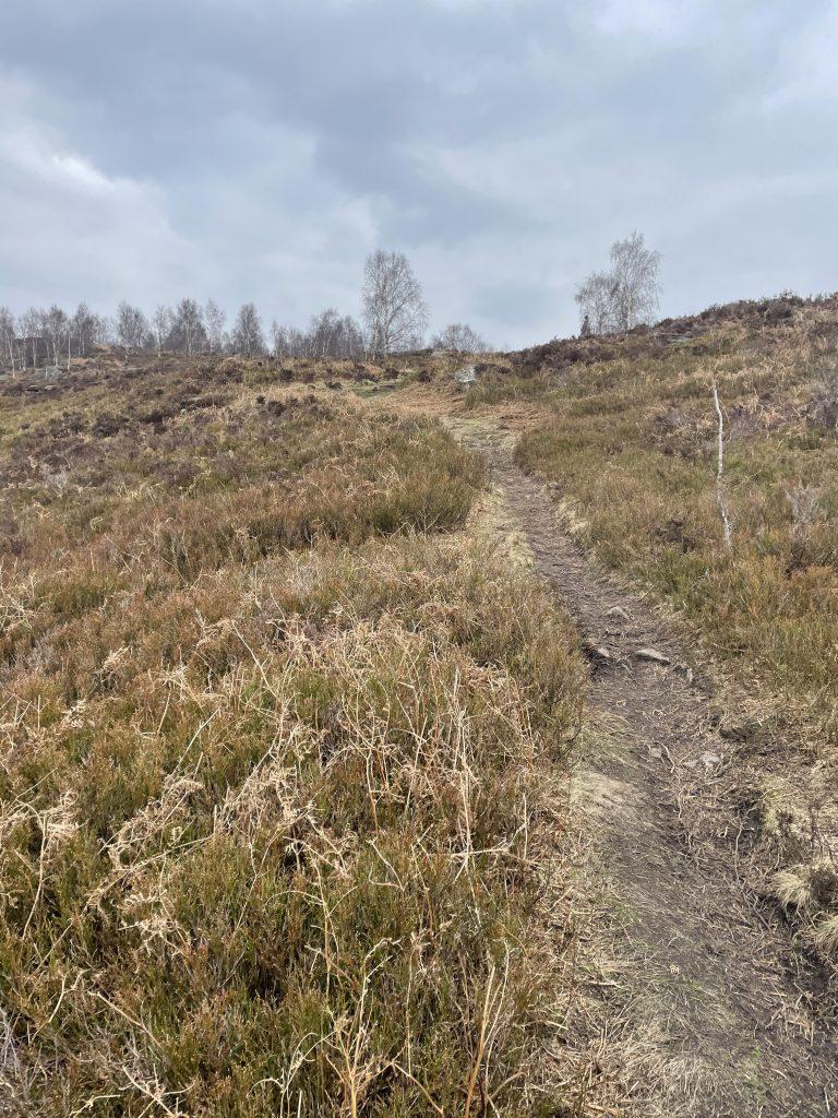 Farnhill moor paths