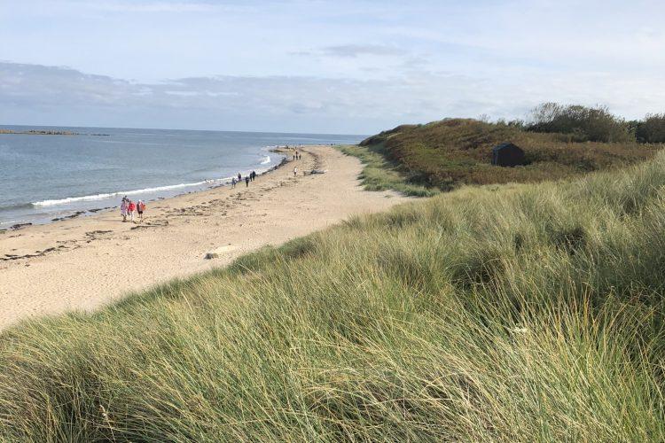 low newton beach. love northumberland