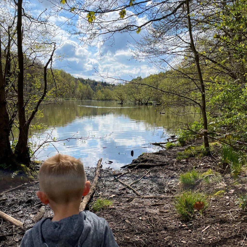 lake at newmillerdam