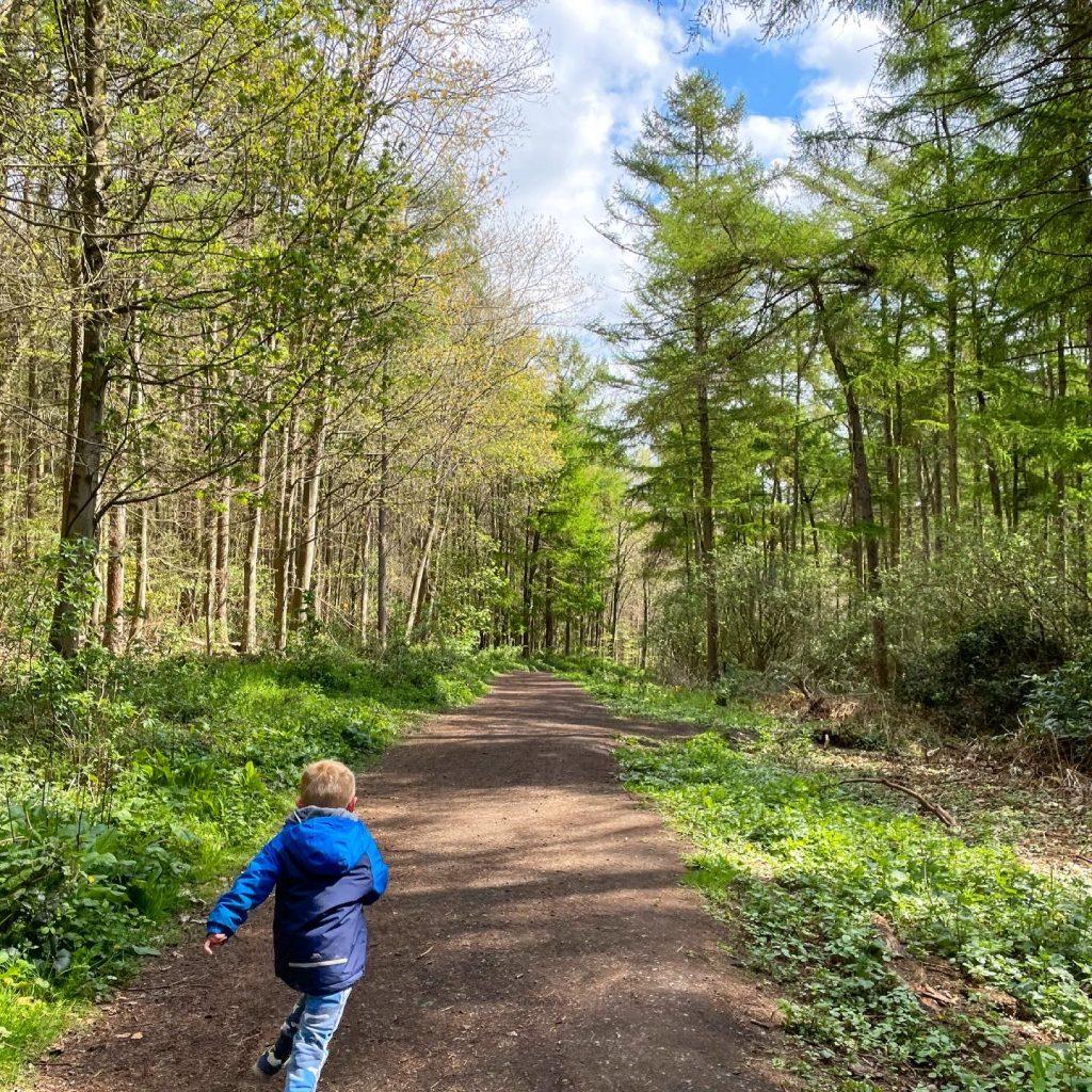 pram friendly paths around gnome roam