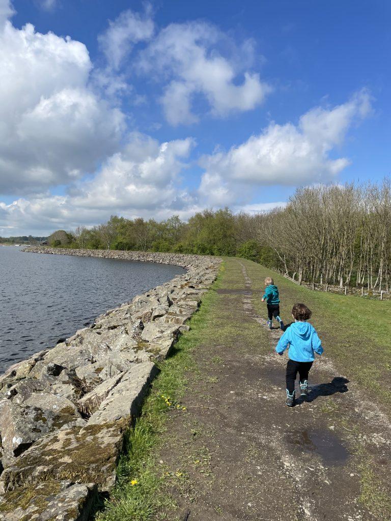Lake Burwain paths