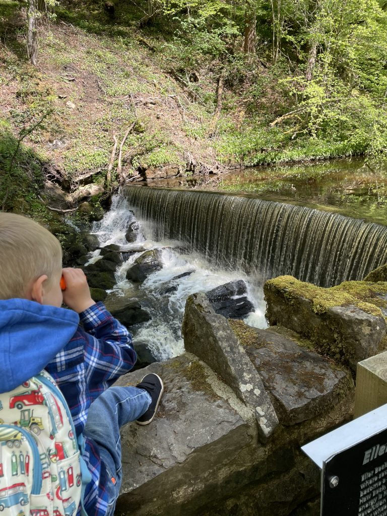 waterfall in skipton woods - wellness