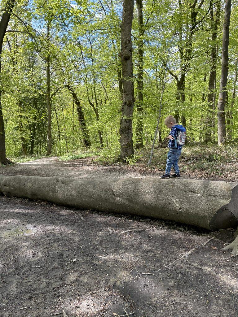 balancing on a log - physical wellness