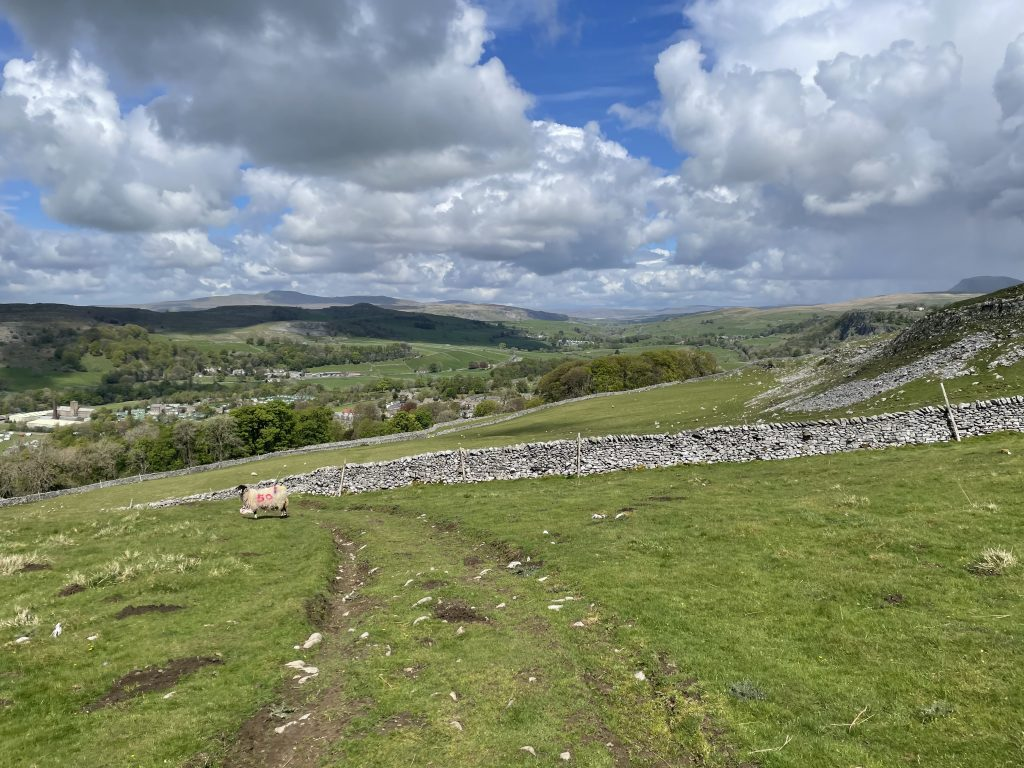 views across to pen-y-ghent