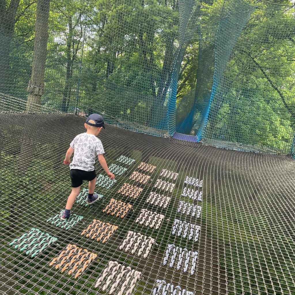 tree top nets at lightwater valley